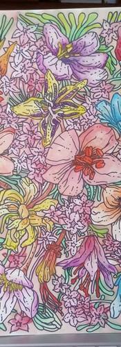 """Available - ~18x12"""" Botanical Illustration #1"""