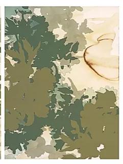 """22x30"""" Available - Botanical Illustration #7"""