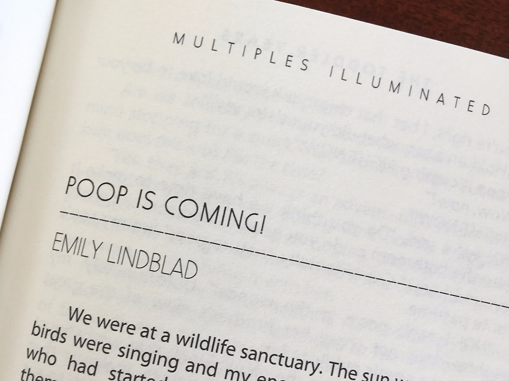 Poop is Coming! by Emily Lindblad, part of the Multiples Illuminated: Life with Twins and Triplets, the Toddler and Tween Years anthology
