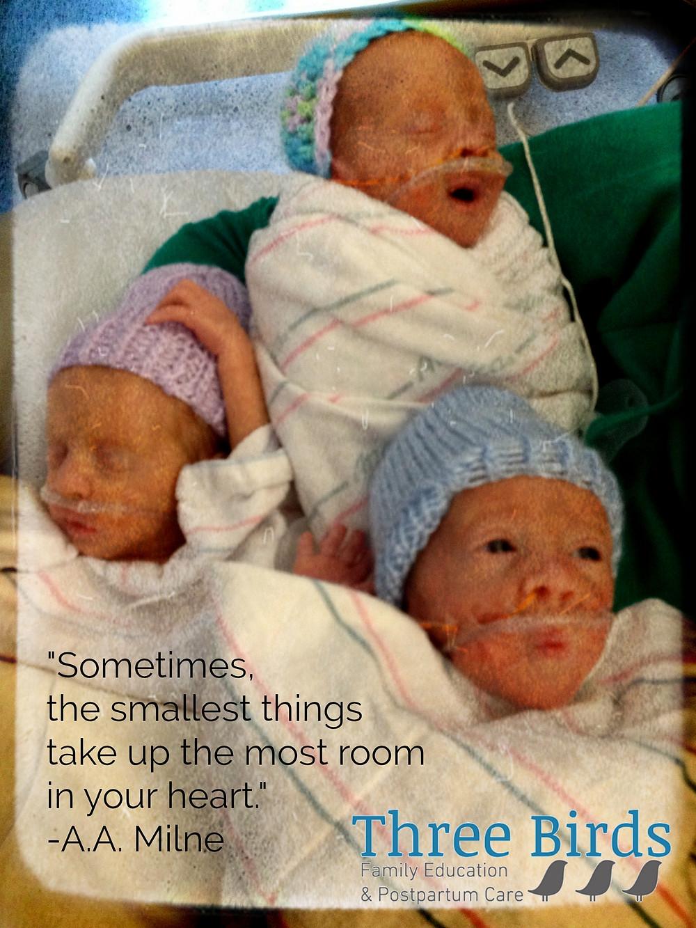 premature triplets
