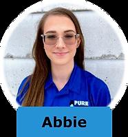 Abbie Ward Mold Remediation