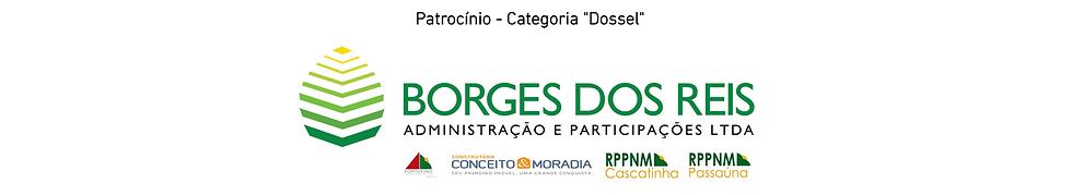 Banner_Patrocínio_Categoria_Dossel_II.p