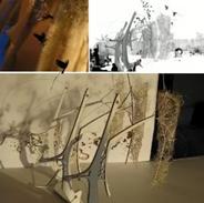 Sunbird Pavilion, International Architecture & Design Showcase