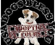 Adoption en cours (1).png