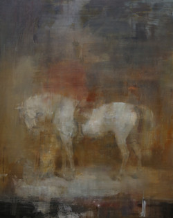 White horse in a stable,