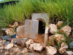 Chiclana Creek Restoration