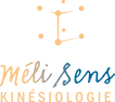 Kinésiologie, Landes, 40, Dax, Biarritz, Côte Basque, 64, Bidart, Kinésiologie formation, pourquoi, Matthew Thie, John Thie, émotions, acupressure, Méridiens, Énergie, Stress, Gestion du stress, Sommeil, Gestion du poids, indications, Approche holistique, Kinésiologie dépression, Troubles de l'humeur, Anxiété, Fatigue, Manque de motivation, Kinésiologie, Touch For Health, Santé par le Toucher, Kinésiologie, Transgénérationnel, Kinésiologue tarif, Médecine énergétique, Médecine informationnelle, Libération émotionnelle, Blocage émotionnel, Kinésiologie indications, Test musculaire, Tonus musculaire, Soins alternatifs, Méthode complémentaire, Formation kinésiologie, Thérapie alternative, Thérapie douce, Thérapie naturelle, Angoisse, Dépression, Atteindre un objectif, Libérer son potentiel, Burn out, Confiance en soi, Émotions, Nervosité, Développement personnel