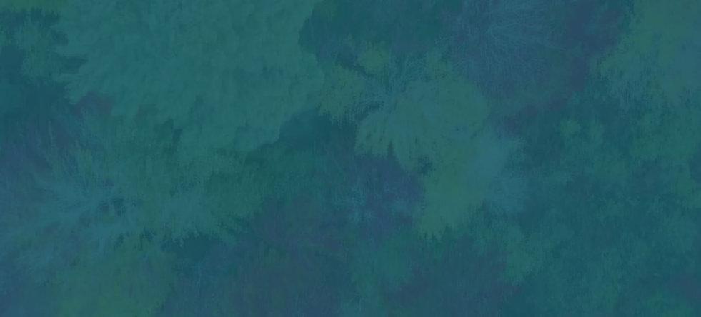 AerialTreesMottled-Lg.jpg