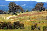Freshford Equestrian Centre Horse Agistment and Riding Trails