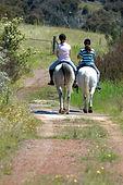 Freshford Equestrian Centre Horse Agistmentand Trail Rides