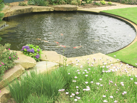 Madison, CT Outdoor Pond Design, Water Features, Water Fountain Construction Services in Clinton, CT