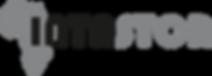 Intastor Logo.png