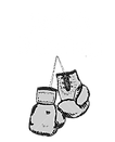 Mid Atlantic Association of Boxing