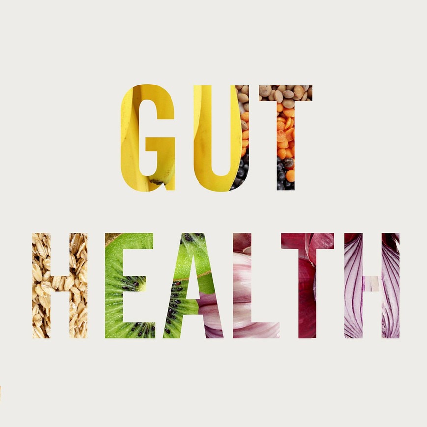 Gut Health: The Core Of A Healthy Body.