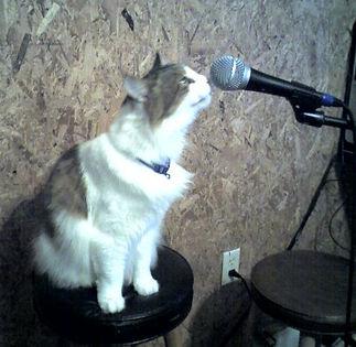 Mabe singing_sml.jpg