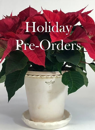 Holiday Pre-Orders Graphic (2).jpg