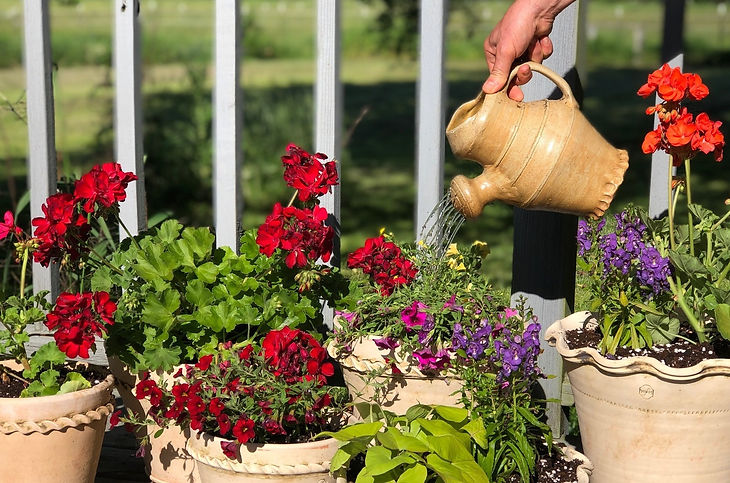 Pots on deck, with watering can cropped