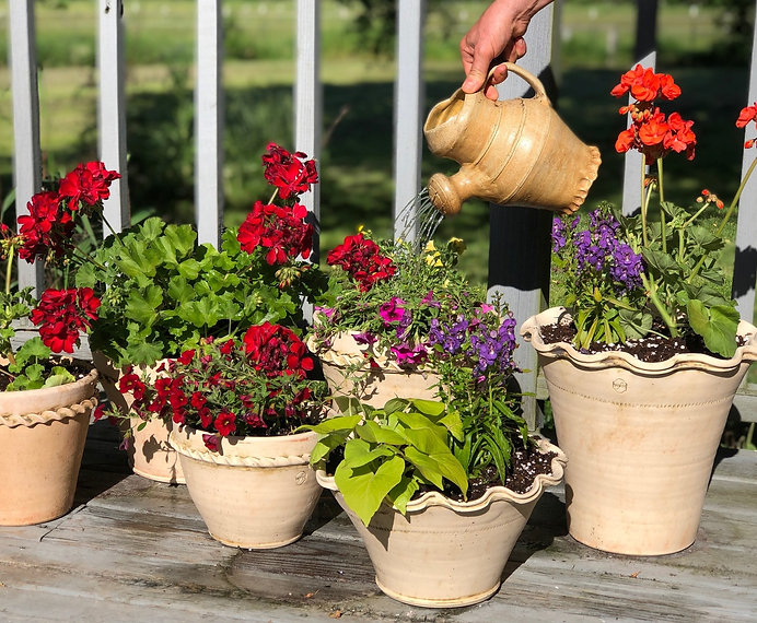 Pots on deck, with watering can 06-08-19