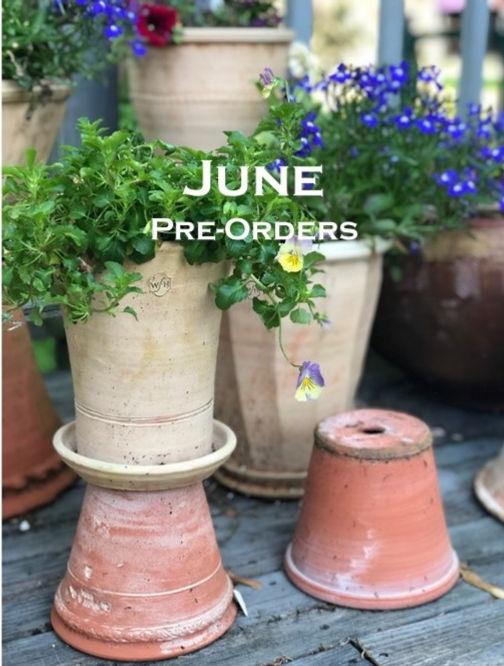 June%20Pre-Orders%2005-14-21_edited.jpg
