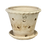 Thumbnail: #3 Orchid Pot with Ornamented Rim