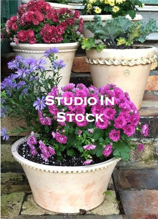 Studio%20In%20Stock%20Graphic%2005-14-21
