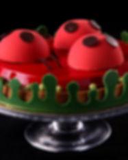 ladybug pound.jpg