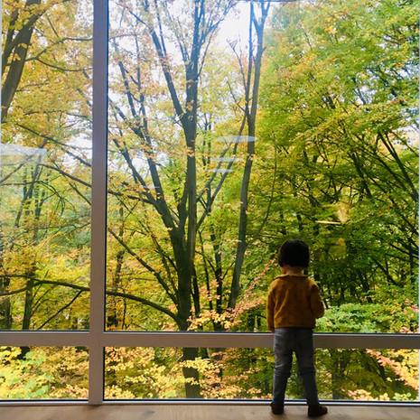 Maison contemporaine à Wavre: enfant vue sur les arbres