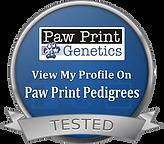 paw prints logo.png