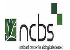NCBS Recruitment 2020 | Freshers | Graduate Trainee | BE/ B.Tech/ ME/ M.Tech/ M.Sc | Bangalore
