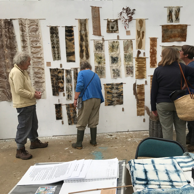 Several different types of Eucalyptus were used to create eco prints whist working as Artist in Residence at the Botanical Gardens in Ventnor