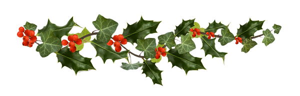 christmas holly 2.png