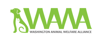 WAWA 5.png