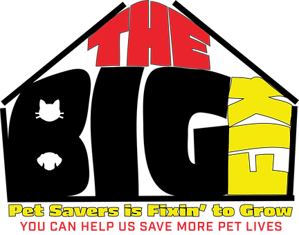 The Big Fix Logo 2.png