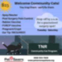 Community Cat Program.png