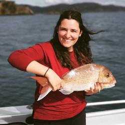 Fishing the Bay of Islands in New Zealan