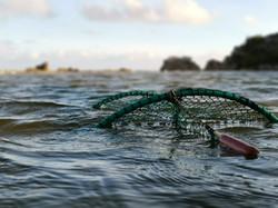 FIshing for eels, Hopkins River, Austral