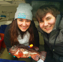 Tagging lumpfish!
