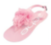shoes 3.png