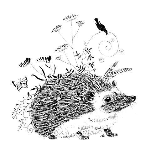Hedgehog's Back Garden