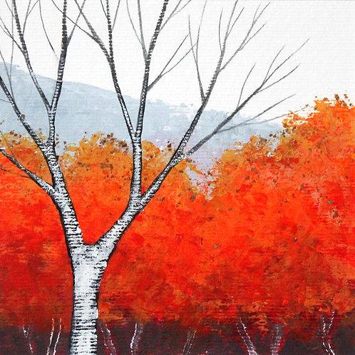Radiant Autumn
