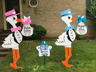 The Stork Stop of Northern Virginia ~ Oakton, Virginia ~ TWINS!