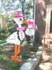 The Stork Stop of Northern Virginia ~ Washington,D.C.~ DC Stork Rental