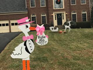 The Stork Stop of Northern Virginia~McLean, VA~Welcome Home Baby Kylie!