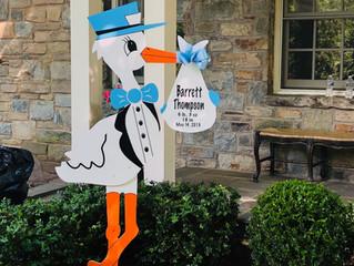 The Stork Stop of Northern Virginia ~ Washington, D.C. ~ DC Stork Rental
