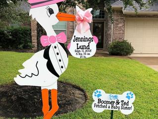 The Stork Stop of Northern Virginia ~ Arlington, VA ~ NOVA Stork Sign Rentals