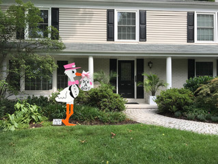 The Stork Stop of Northern Virginia ~ Potomac, MD ~ Stork Lawn Sign ~ Sweet Baby Girl