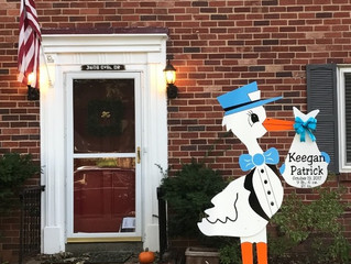 The Stork Stop of Northern Virginia ~ Alexandria VA Stork Rental