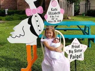 The Stork Stop of Northern Virginia ~ Burke, Virginia ~ Welcome Home Baby Girl!