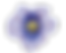 BCI Logo-Flower PNG.png