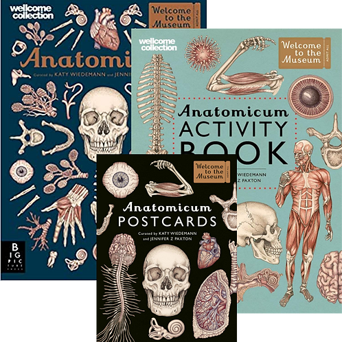 Anatomicum Collection